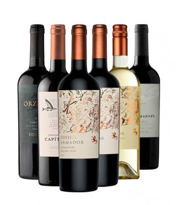 Pack 6x Vinos Orgánicos...