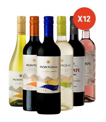 Pack x12 Vinos Varietales MIX